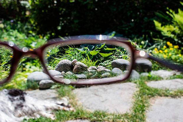 The garden through glasses